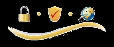 Desert Synthetics LLC® Privacy Policy